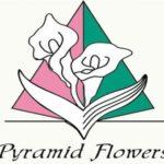 th62_logo_pyramid-1.jpg
