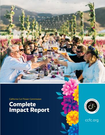 report_pdf